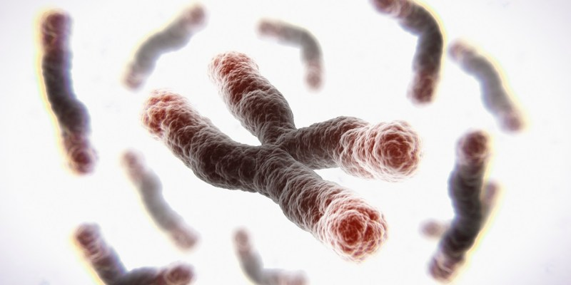 RNA Therapeutics Lengthen Telomeres and Reverses Aging in Human cells.