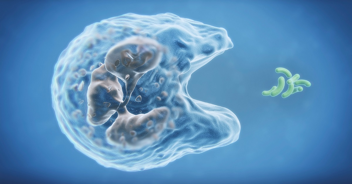 Thanks to Gene Thieves We Have 'Alien DNA' in Our Mitochondria