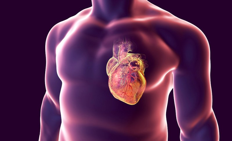Evolocumab a PCSK9 inhibitor nmed as top 10 advance in heart disease.