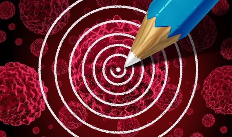 targeting cancer stem cells