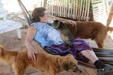 Rosemary Gordon: The Woman Who Saves the Animals   Long Haul Trekkers #animalrescue