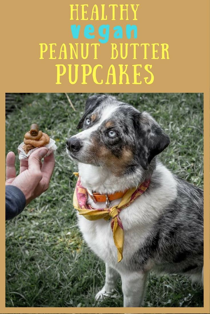 Healthy Vegan Pupcakes | Long Haul Trekkers