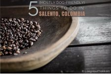 5 Things to Do in Salento, Colombia | Long Haul Trekkers