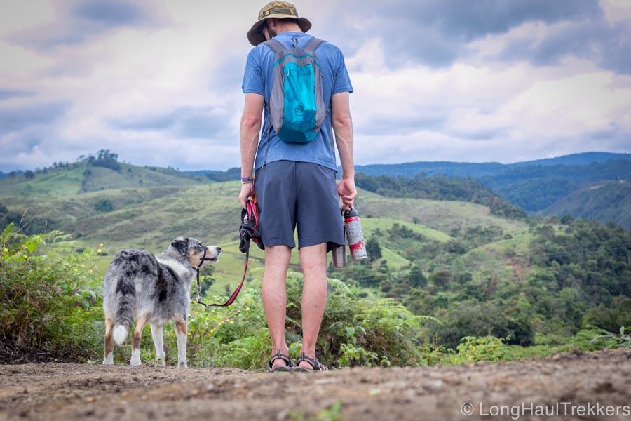 7 Tips for Handling Off-Leash Dogs | Long Haul Trekkers