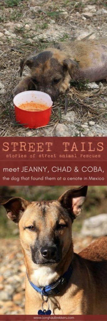 Street Tails: Coba, Jeanny, & Chad   Long Haul Trekkers