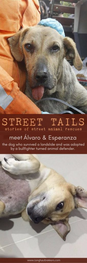 Street Tails: Alvaro Munera and Esperanza | Long Haul Trekkers