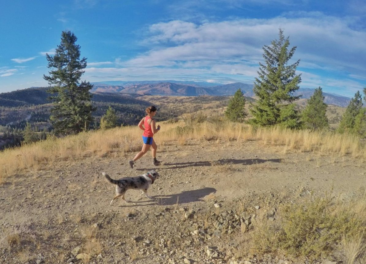 Before you hit the trails with your four-legged pal, read these tips on running with a dog.