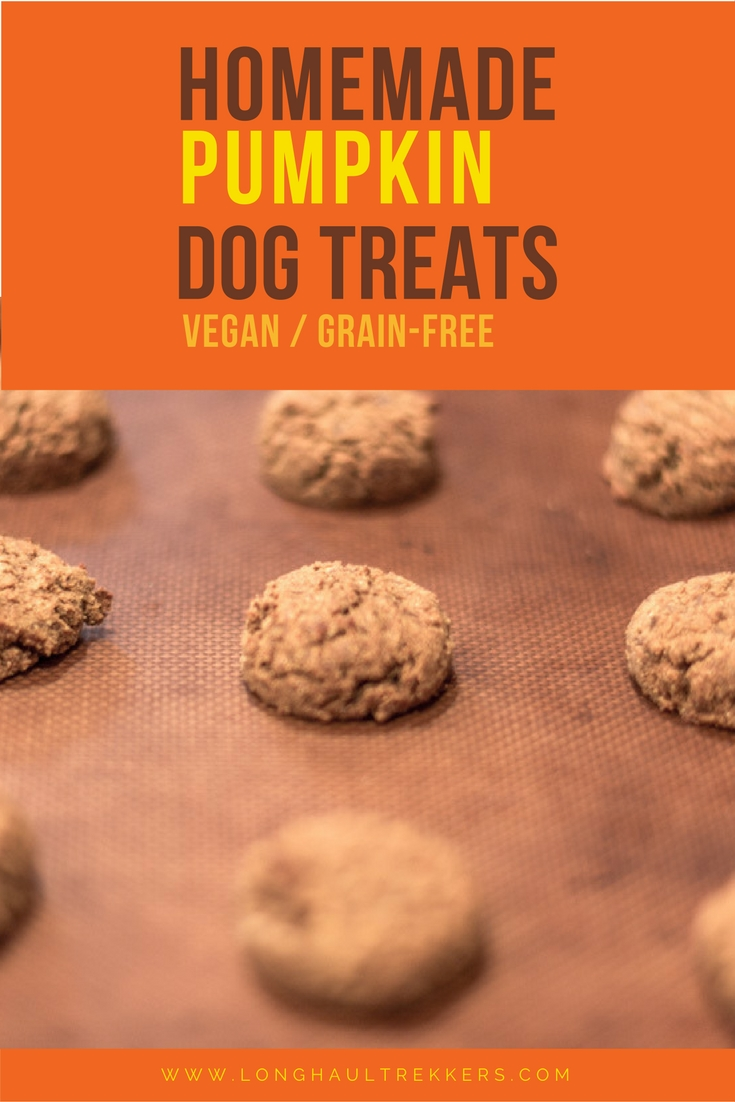 This grain free dog treat recipe is also vegan and gluten-free. These pumpkin dog treats are packed with tons of healthy ingredients like chickpea flour, coconut flour, coconut oil, and molasses. You may even want to eat them yourself!