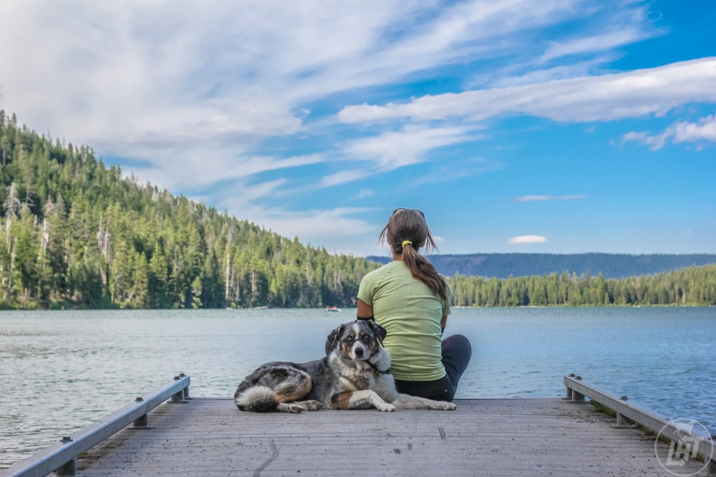 Do something outside of your comfort zone, with your dog.