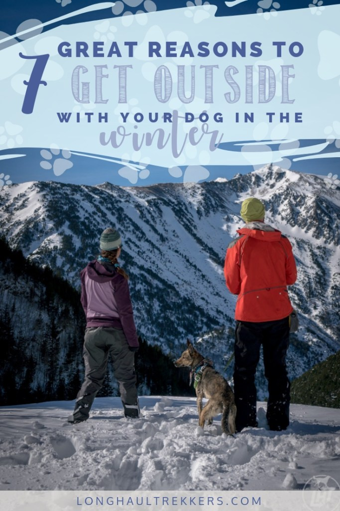 Getting outside in the winter is not always easy. So here are 7 reasons to embrace outdoor winter activities with your dog.