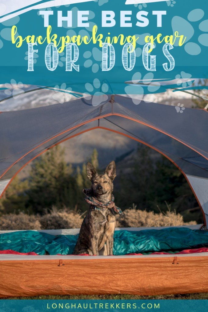 Unsure what to pack for a backpacking trip with your dog? This guide advises you on all the dog backpacking gear you need.