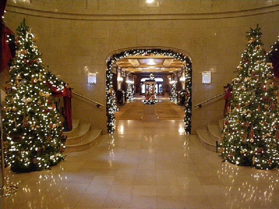 Commercial Gallery Long Island Christmas Light Installation