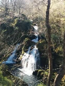 walk-waterfall