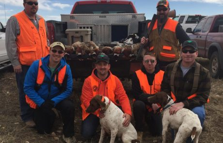 Longmeadow Game Resort - Pheasant Hunting