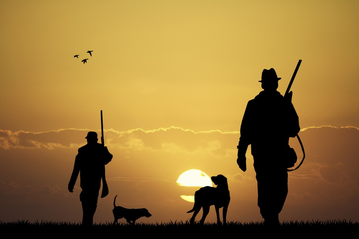 Man and dogs on a hunt - Hunting Memberships