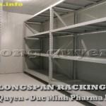 Giá kệ kho hàng hạng trung Longspan Rack