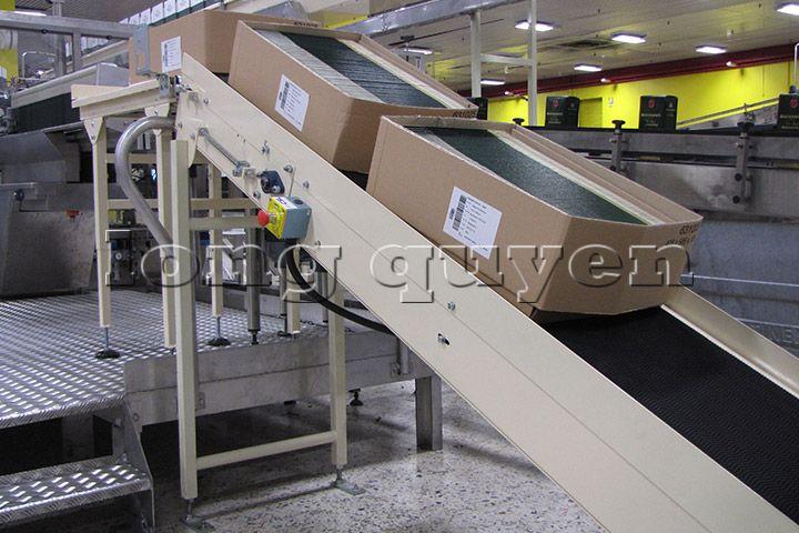 Băng chuyền băng tải dây đai công nghiệp (3)