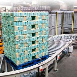 Băng chuyền băng tải pallet chứa hàng