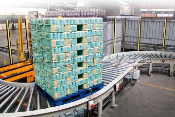 Băng chuyền băng tải pallet chứa hàng (4)