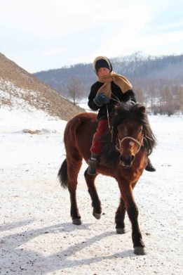 enfant c3a0 cheval