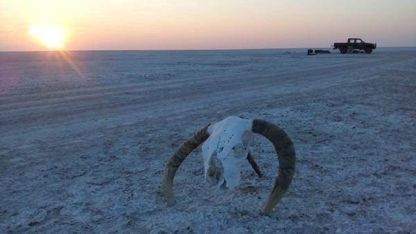 An overnight trip into the Makgadikgadi Salt Pan. No one else around for miles.