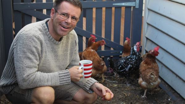 Six chickens in Perth's East Vic Park provide breakfast each morning