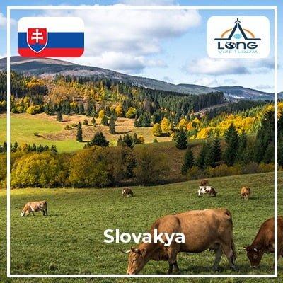 slovakya 4