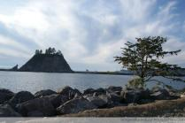 First Beach, Olympic National Park