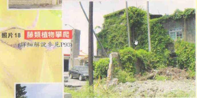 feng-shui-yang-house-longyu369323