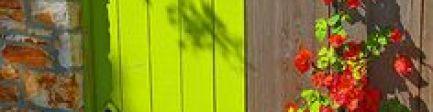 陈巃羽风水阳宅之〝住宅有藤类植物攀爬,主官司、桃花〞