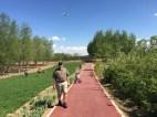 Greenway Path