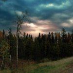 Highway 35 (Wisconsin)