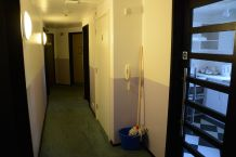 This is the hallway in the flat. I have no idea why there are so many mops.