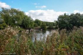 Thames Wallk