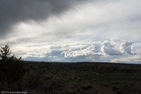 Eastern Oregon-10-1143
