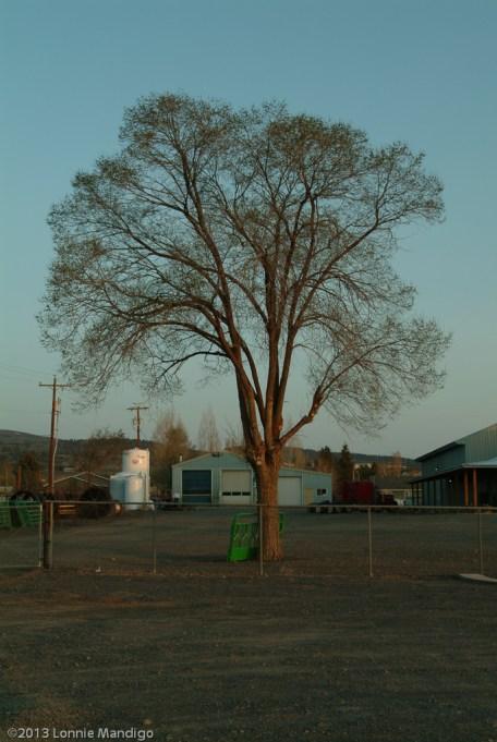 Eastern Oregon-06-025