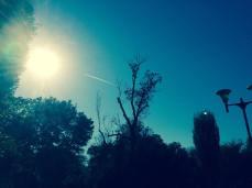 mopana-airplane-on-the-sky-04