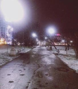 mopana-First-snow-02