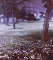mopana-First-snow-05