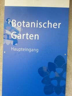 mopana-Belvedere-Palace-vienna-botanical-garden-01
