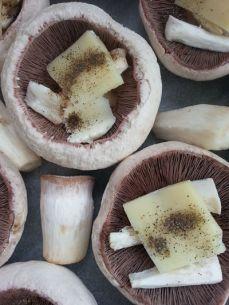 mopana-champignon-mushrooms-09