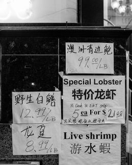 milford-street-special-lobster-bw