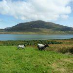 Ireland, the magic island