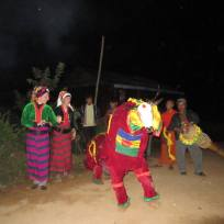 Traditional shan show