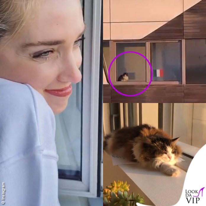 CityLife: Chiara Ferragni e il gatto Tabata