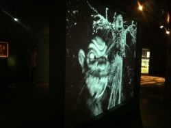 Ladislas Starewitch. Image from the exhibition Metamorphosis at the CCCB Barcelona August 2014. Photo Alx Phillips.