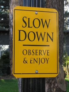 "image of a sign in Oregon saying ""Slow Down, Observe & Enjoy"""
