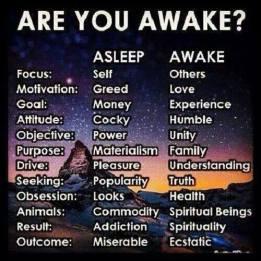 Are You Awake , Aware , Conscious ?