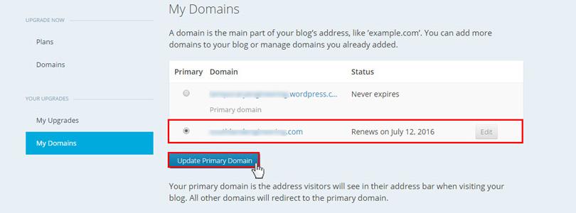 update primary WordPress domain