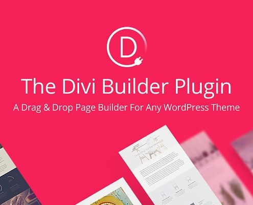 The Divi Builder
